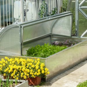 Standart Mini Greenhouse