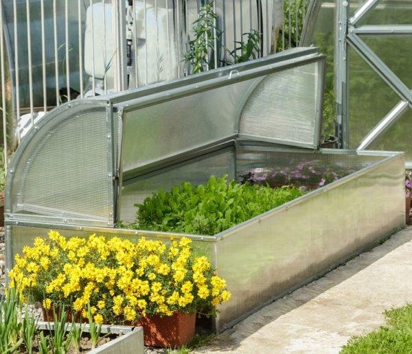 Standart Mini Greenhouse